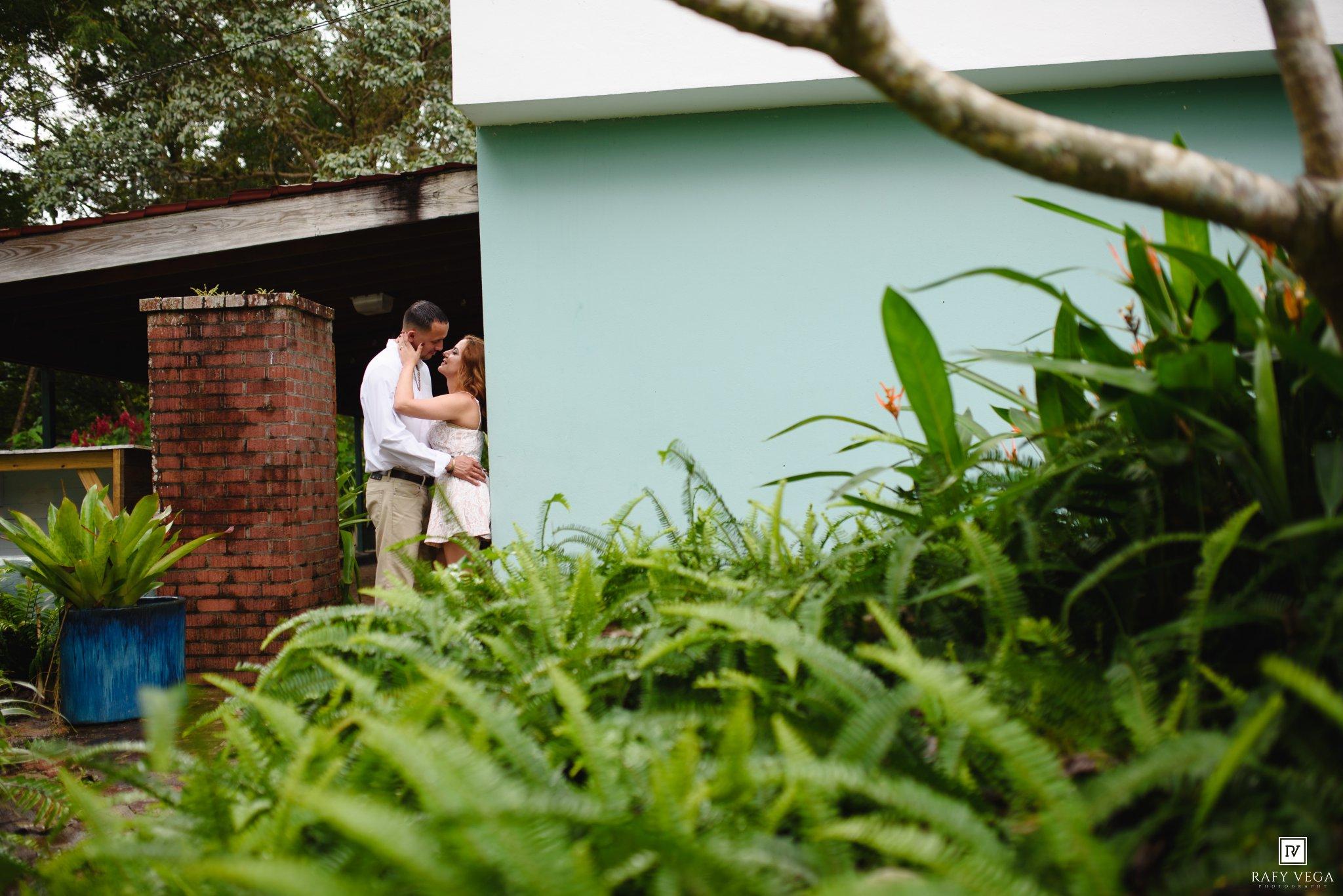 Una historia de amor en el jard n bot nico de caguas for Amor en el jardin