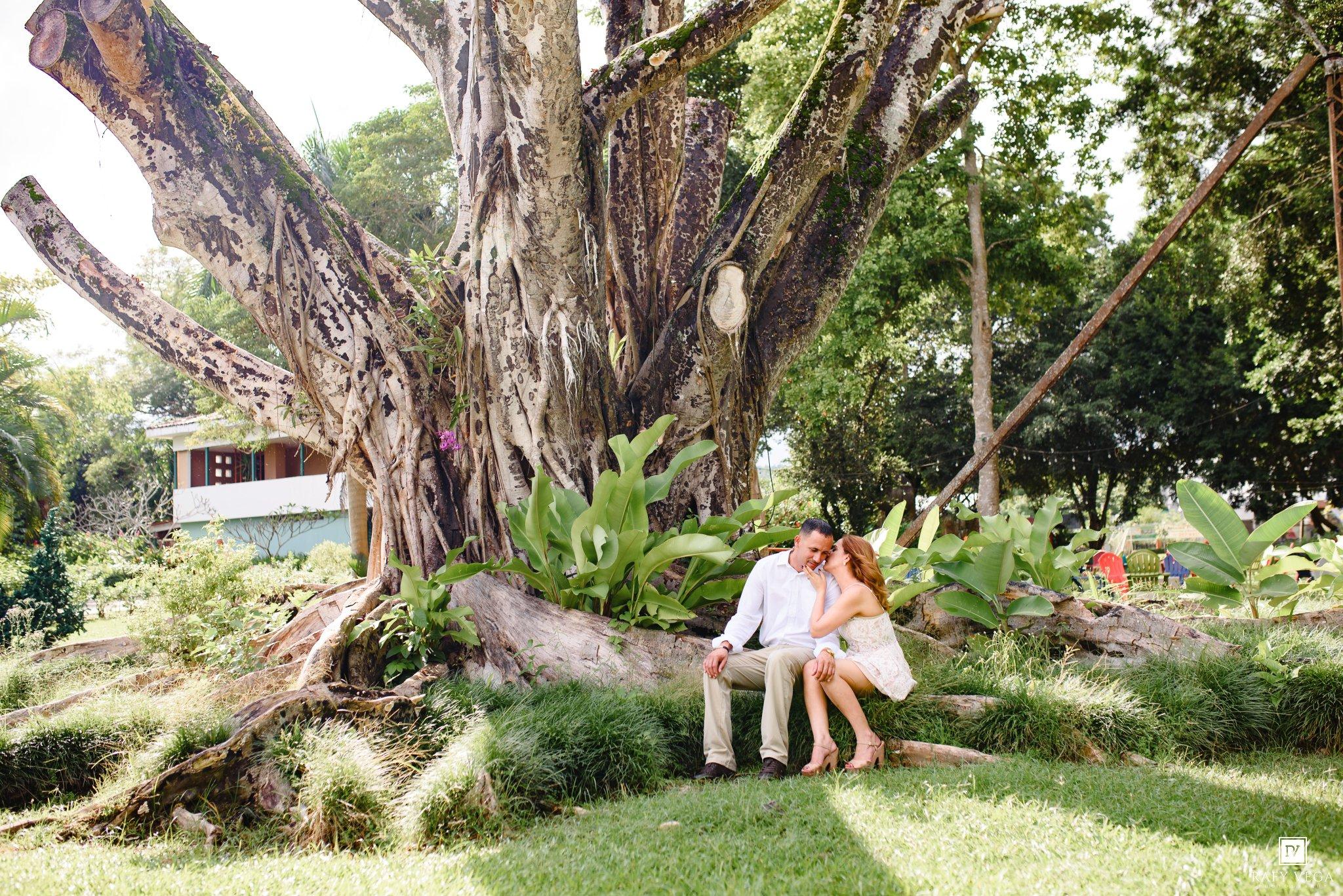 Una historia de amor en el jard n bot nico de caguas for Actividades en el jardin botanico de caguas